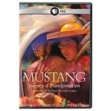 Mustang, Journey of Transformation